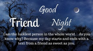 Romantic Good Night Messages for Friends